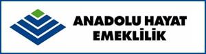 Anadolu-hayat-emeklilik-acente.org
